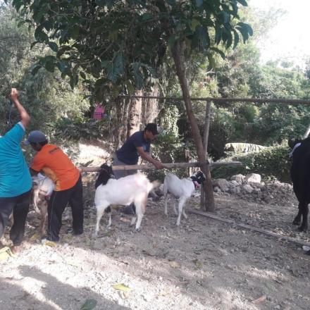 Peringatan Hari Besar Islam di Desa Tireman