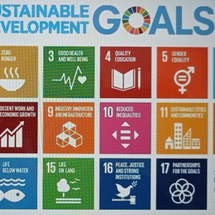 SDGs (Sustainable Development Goals)